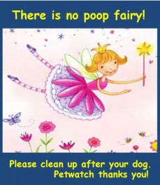 pick up after pet no poop fairy